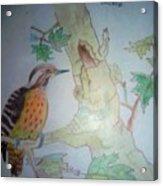 Bird's Life Acrylic Print