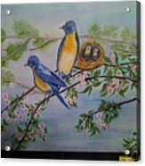 Birds Nest Family Acrylic Print