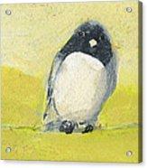 Birds On A Wire Acrylic Print