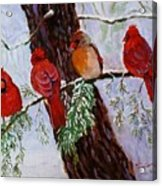Birds On Branch In Snow Acrylic Print