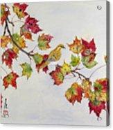 Birds On Maple Tree 1 Acrylic Print