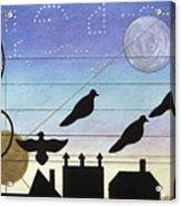 Birds On Wires Acrylic Print