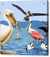 Birds With Strange Beaks Acrylic Print