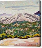 Birdseye Landscape #4 Acrylic Print