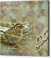 Birthday Greeting Card - White-throated Sparrow Songbird Acrylic Print
