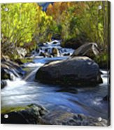 Bishop Creek Acrylic Print