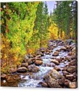 Bishop Creek In Autumn Acrylic Print