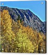 Bishop Creek Mountains Acrylic Print