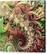 Bisymmetric Spiral Spring Acrylic Print