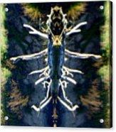 Bitsy Bug Acrylic Print