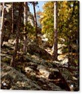 Blach Hills Terrain Acrylic Print