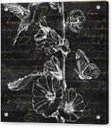 Black And Gold Hummingbirds 2 Acrylic Print