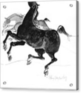 Black And Gray Acrylic Print