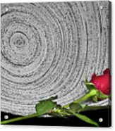 Black And White And Red All Over Acrylic Print