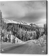 Black And White Bow Valley Parkway - Winter Acrylic Print