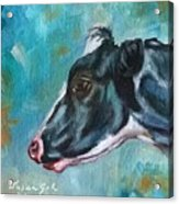 Black And White Cow Acrylic Print