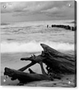 Black And White Driftwood At Whitefish Point Acrylic Print