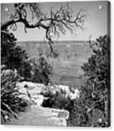 Black And White Grand Canyon 2 Acrylic Print