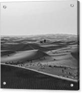 Black And White Hot Desert Acrylic Print