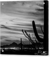 Black And White Night In Arizona Acrylic Print