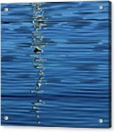 Black And White On Blue Acrylic Print