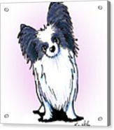 Black And White Papillon Acrylic Print