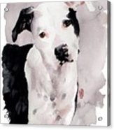Black And White Pit Acrylic Print