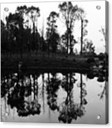 Black And White Reflected Acrylic Print