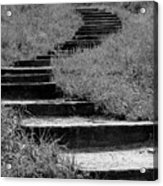 Black And White Steps Acrylic Print