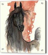 Black Arabian Horse 2013 11 13 Acrylic Print