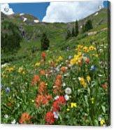 Black Bear Pass Landscape Acrylic Print