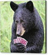 Black Bear Says I Call  Acrylic Print