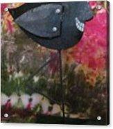 Black Bird Acrylic Print by David Sutter