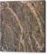 Black Canyon Geology Acrylic Print