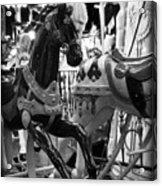 Black Carousel Horse Acrylic Print