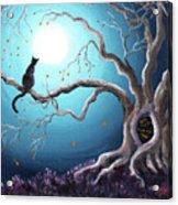 Black Cat In A Haunted Tree Acrylic Print