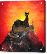 Black Cat. Mistress Of Diamond Mountain Acrylic Print