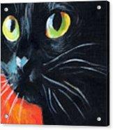 Black Cat Painting Portrait Acrylic Print
