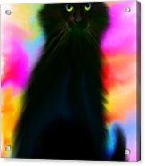 Black Cat Rainbow Sky Acrylic Print
