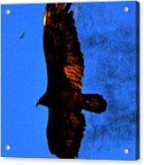 Black Eagles Vision Acrylic Print