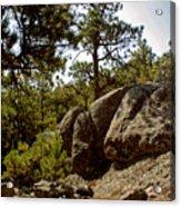 Black Hills II Acrylic Print