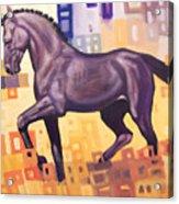 Black Horse Acrylic Print