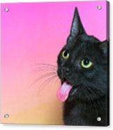 Black Kitten Says Yuck Acrylic Print