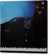 Black Panther And His Piano Acrylic Print