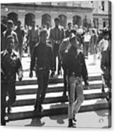 Black Panthers, 1967 Acrylic Print