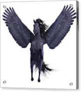 Black Pegasus On White Acrylic Print