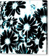 Black Petals With Sprinkles Of Teal Turquoise Acrylic Print