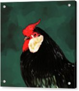 Black Rooster Number Two Acrylic Print