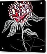 Black Rose Acrylic Print
