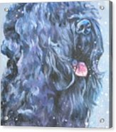 Black Russian Terrier In Snow Acrylic Print
